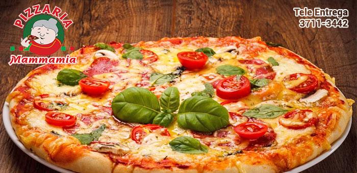Pizza Grande com até 4 sabores na Mammamia - Pizzaria Mammamia